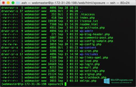Скриншот программы Wget для Windows 10