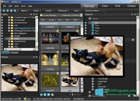 Скриншот программы ACDSee Photo Manager для Windows 10