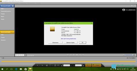 Скриншот программы SolveigMM Video Splitter для Windows 10