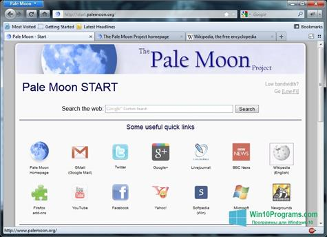 Скриншот программы Pale Moon для Windows 10