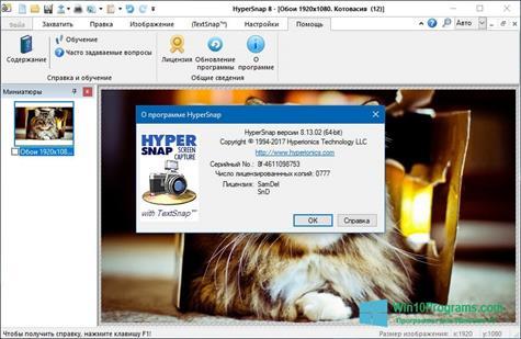 Скриншот программы HyperSnap для Windows 10