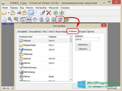 Скриншот программы Universal Viewer для Windows 10