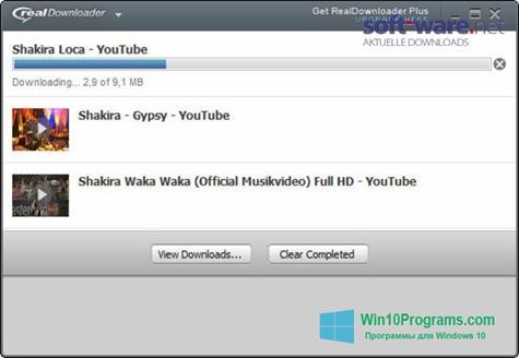 Скриншот программы RealDownloader для Windows 10