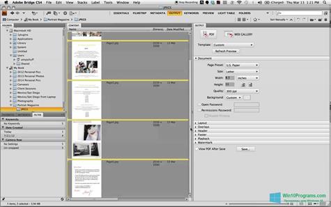 Скриншот программы PDF Combine для Windows 10