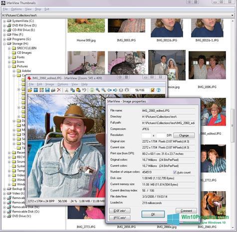 Скриншот программы IrfanView для Windows 10