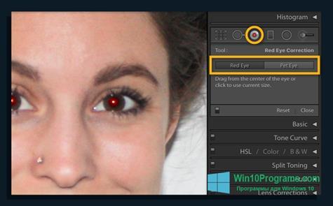Скриншот программы Red Eye Remover для Windows 10