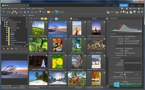 Скриншот программы Zoner Photo Studio для Windows 10