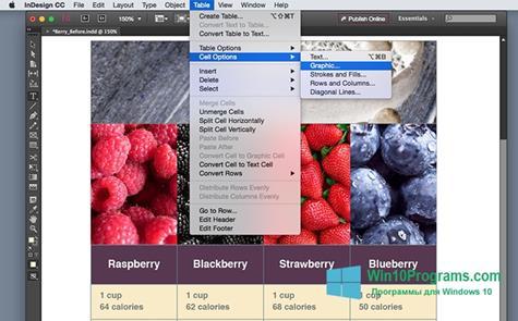 Скриншот программы Adobe InDesign для Windows 10