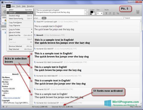 Скриншот программы NexusFont для Windows 10