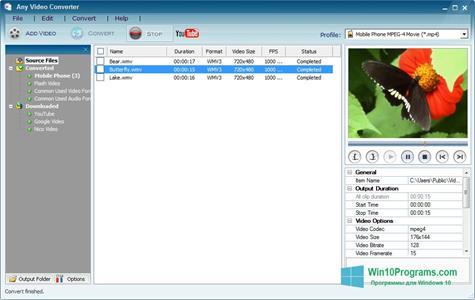 Скриншот программы Any Video Converter для Windows 10
