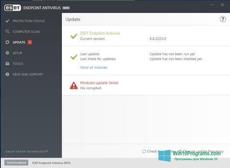 Скриншот программы ESET Endpoint Antivirus для Windows 10