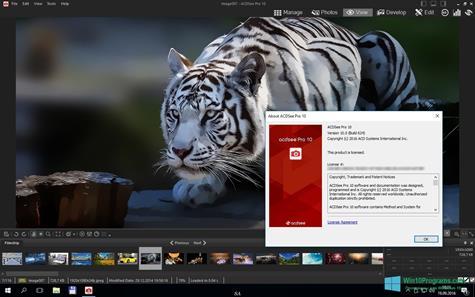 Скриншот программы ACDSee Pro для Windows 10