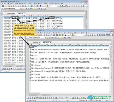 Скриншот программы UltraEdit для Windows 10